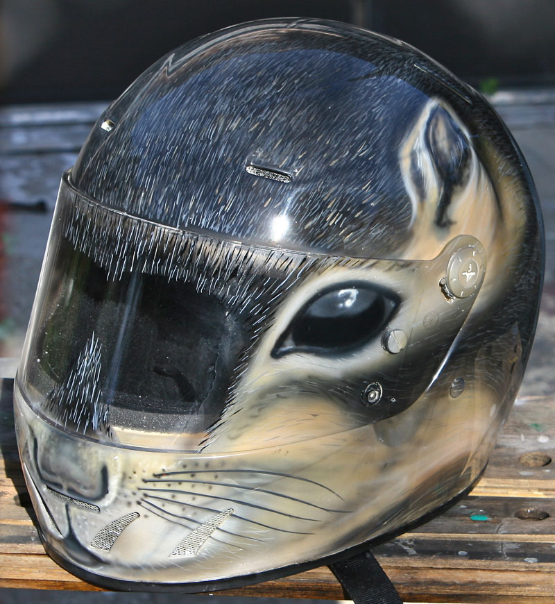 squirrel airbrushed helmet